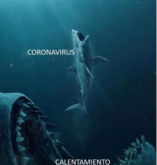 Coronavirus: experiencia piloto